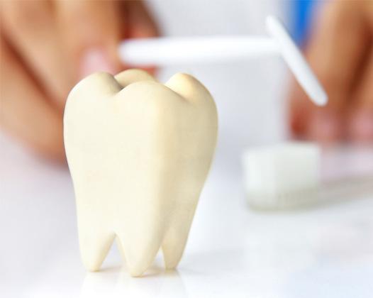 Выбили зуб. Что делать?